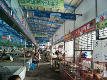 急转岳蔍区枫林农贸大市场G76号10平方鸡鸭铺_搜门面网